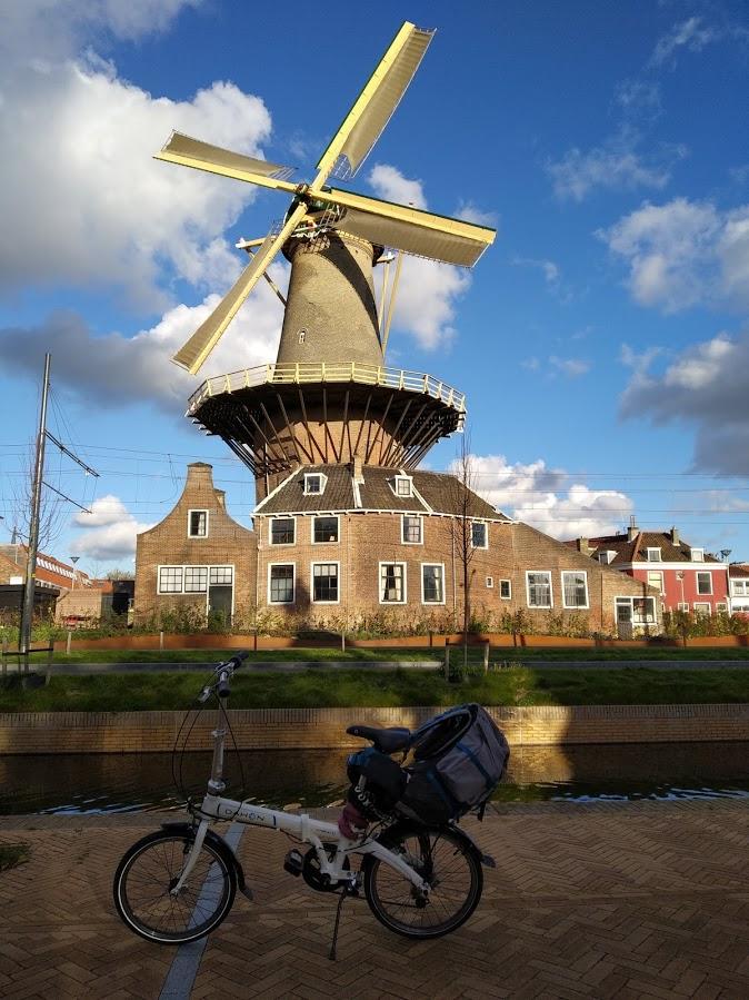 Molino en Delft